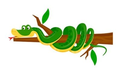 30 Fassscinating Facts about Snakes