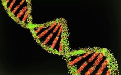 Alien Life Might Exist, New Study on Genetic Molecules Finds