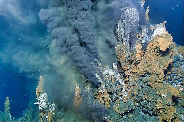 Ancient life was in some hot water…but that's a good thing