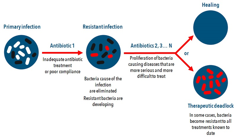 pro-ag system how antibiotic resistance works
