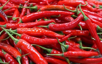Capsaicin Miracle: 4 Chili Peppers a Week Help You Cheat Death