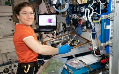 Astronaut Christina Koch Breaks Spaceflight Record